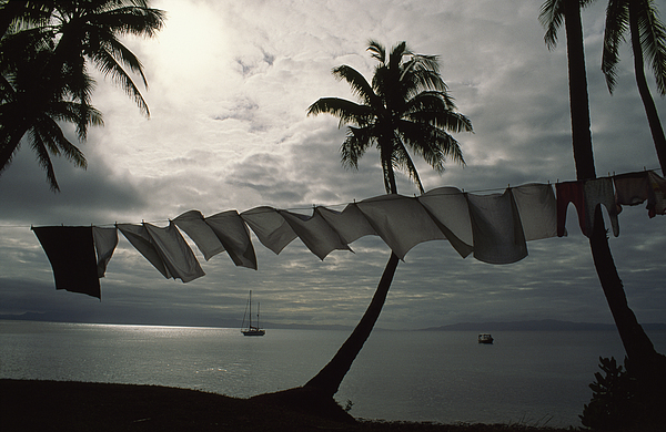 Laundry Photograph - Buca Bay, Laundry And Palm Trees by James L. Stanfield