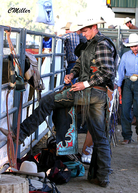 Rodeo Photograph - Bucklin Up.. by Carol Miller