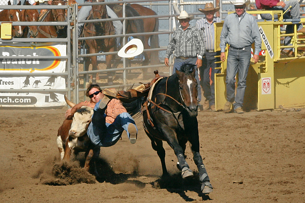 Cowboy Photograph - Bulldogging At The Rodeo by Christine Till