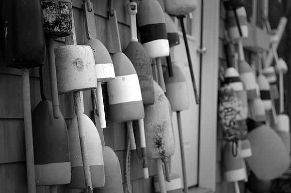 Buoy Photograph - Buoys by Eric Gendron