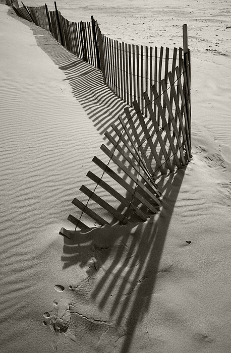Sand Photograph - Buried by Timothy Johnson