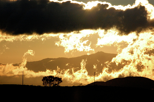 Hawaii Photograph - Burning Sunset by Samantha Kimble