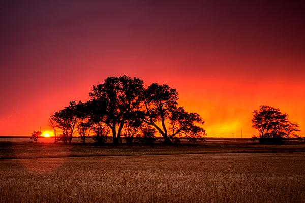 Sunset Photograph - Burning Sunset by Thomas Zimmerman