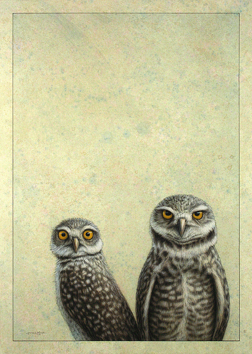 Owls Painting - Burrowing Owls by James W Johnson