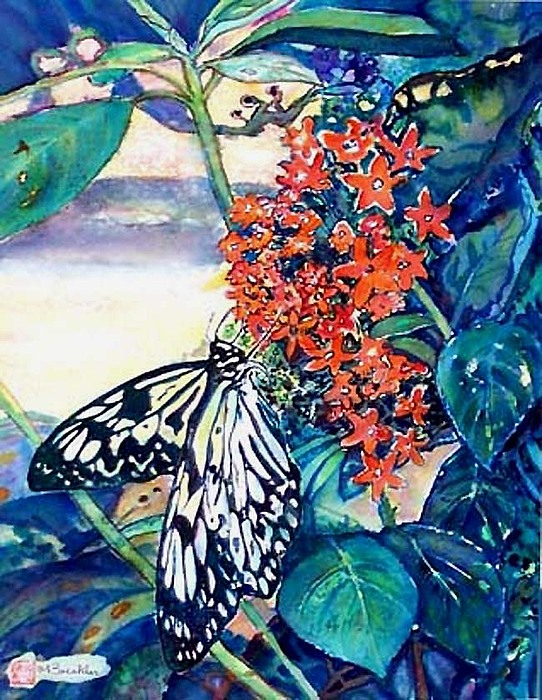 Butterfly At Mac Painting by Norma Boeckler