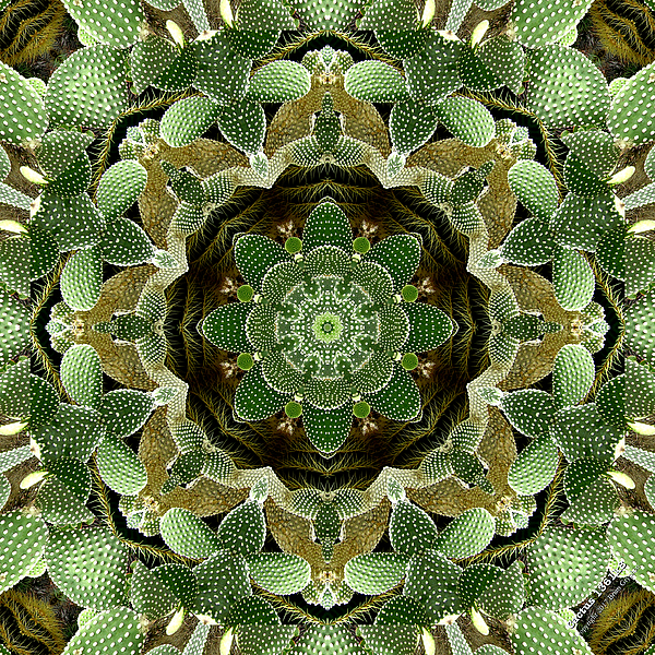 Green Digital Art - Cactus 1361k8 by Brian Gryphon