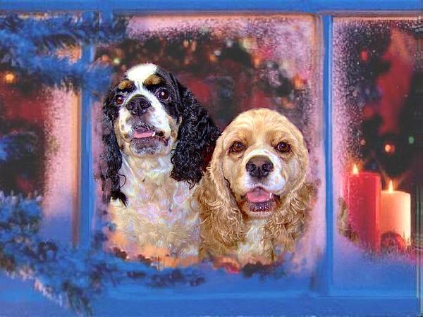 Cocker Spaniels Painting - Cali And Daisy by Sue Alandar