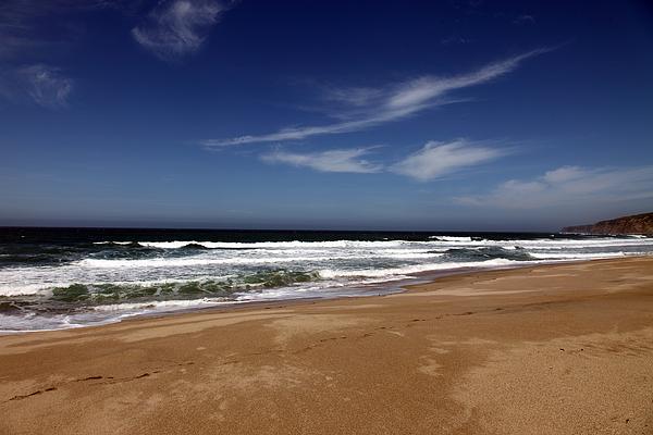 scott Creek Beach Photograph - California Coast by Amanda Barcon
