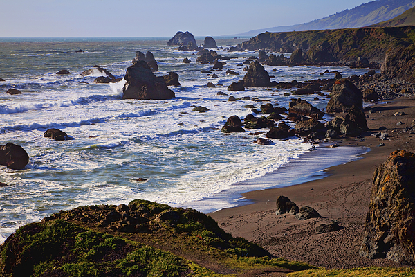 California Coast Photograph - California Coast Sonoma by Garry Gay