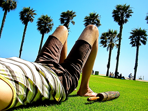 Palm Trees Photograph - California Dreaming by Amber Abbott