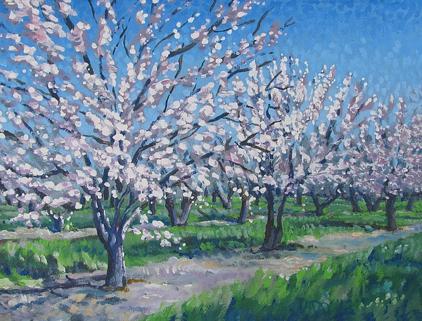 California Painting - California Orchard by Vanessa Hadady BFA MA