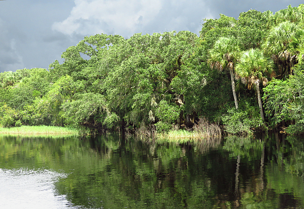 River Photograph - Calm River Reflections by Rosalie Scanlon