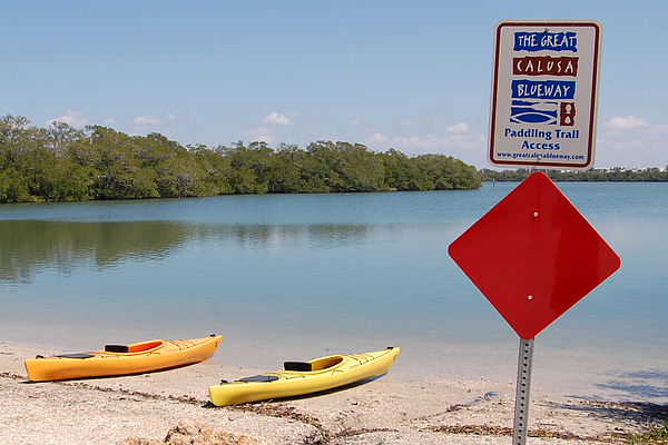 Kayak Photograph - Calusa Blueway by Steven Scott