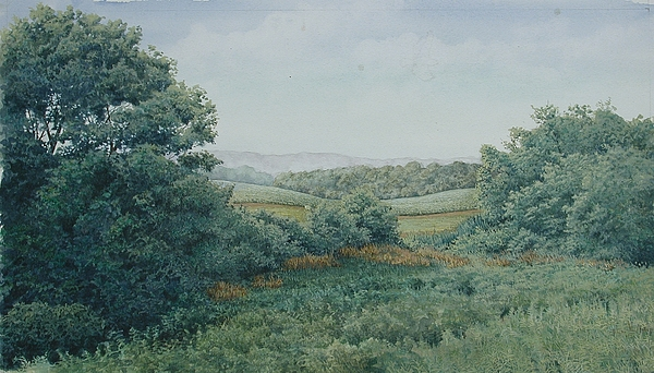 Landscape Painting - Camillus Field by Stephen Bluto