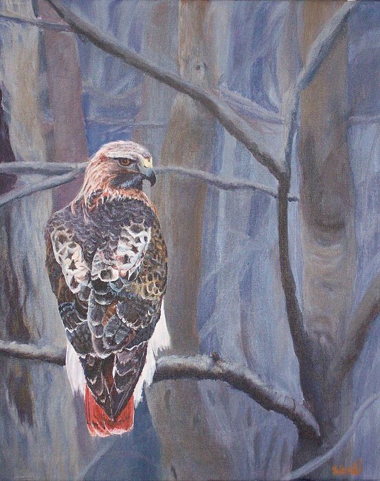 Animal Paintings Painting - Cant See The Forest For The Trees by Bill Werle