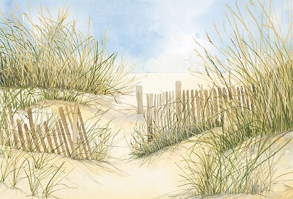 Print Painting - Cape Cod Dunes And Fence by Virginia McLaren