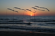 Sunset Photograph - Capturing The Wind by Kate Bell