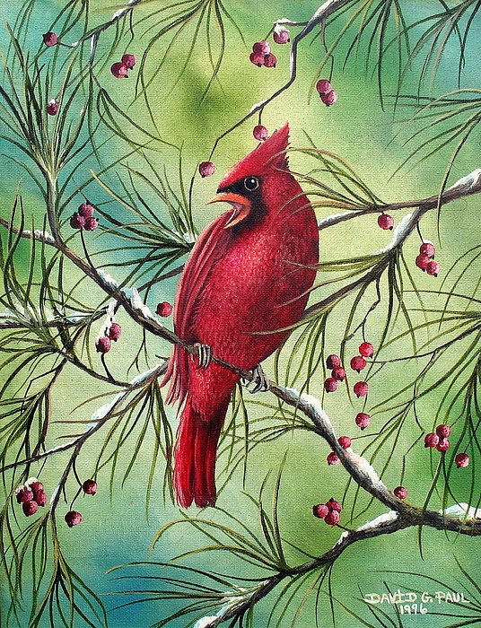 Cardinal Painting - Cardinal by David G Paul
