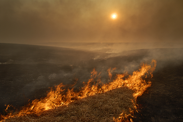 Outdoor Photograph - Carefully Managed Fires Sweep by Jim Richardson
