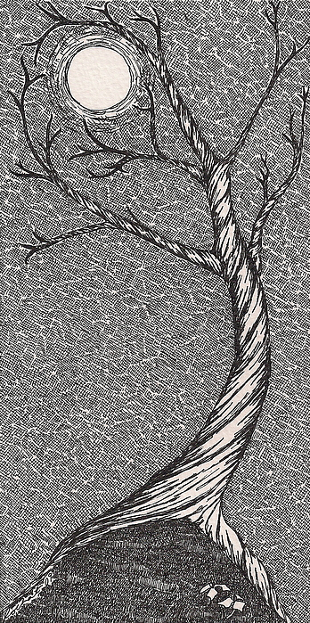 Tree Drawing - Caress The Moon by Melanie Rochat