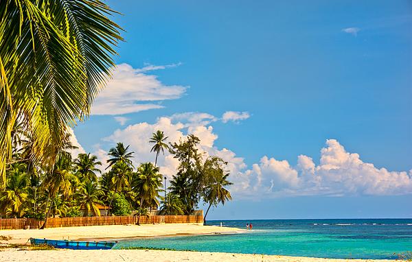 Caribbean Photograph - Caribbean Paradise by Barry C Donovan