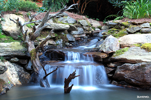 North Carolina Photograph - Carolina Mountain Stream by Al Blackford