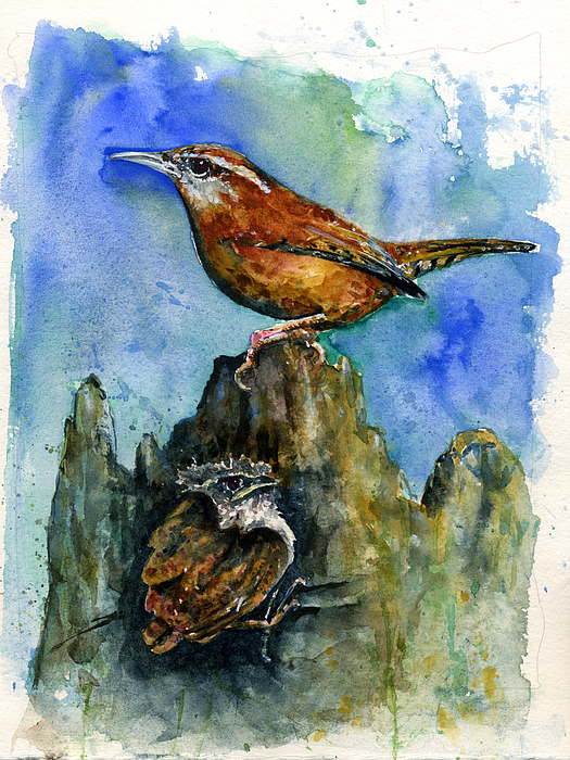 Wren Painting - Carolina Wren And Baby by John D Benson