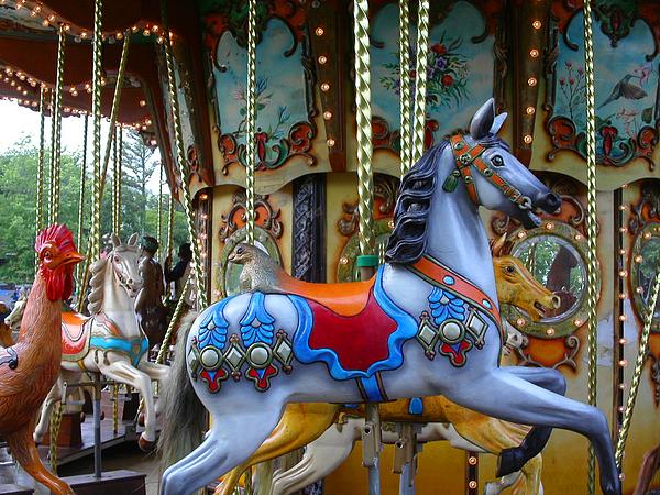 Carousel Photograph - Carousel 1 by Anne Cameron Cutri