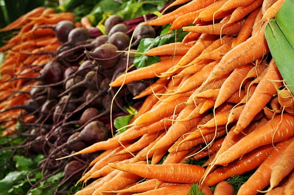 Carrots Photograph - Carrots And Beets by Cathie Tyler