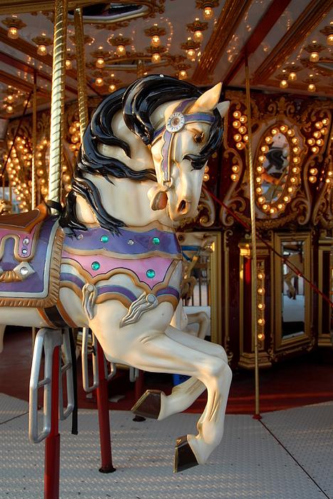 Horse Photograph - Carrousel 44 by Joyce StJames