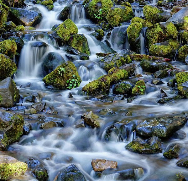 Water Photograph - Cascade Of Many Waters by Rick Lawler
