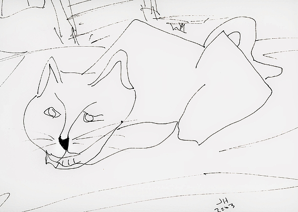 Cats Drawing - CAT by Jerry Hanks