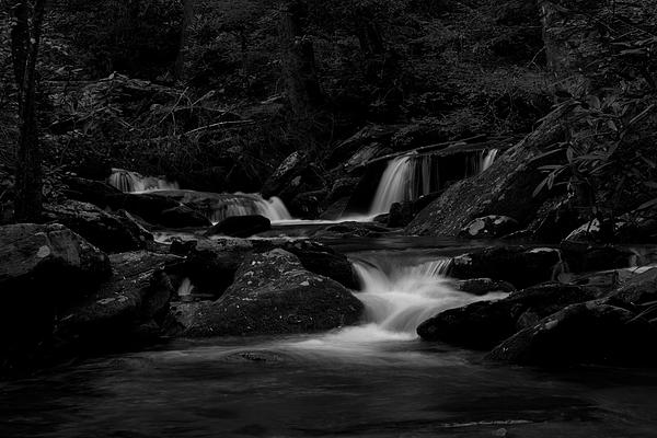 Streams Photograph - Catawba Basin B -n- W by Forrest N Camellia