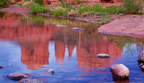 Red Rocks Photograph - Cathedral Rock Reflection Pastel by Bob Coates