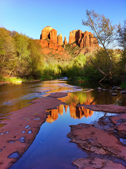 Iphoneography Photograph - Cathedral Rock Sedona by Matt Suess