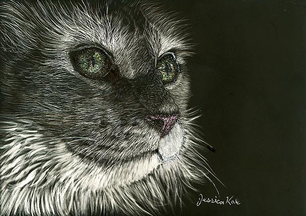 Cat Mixed Media - Cats Gaze by Jessica Kale
