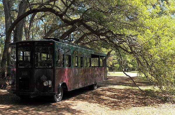 Melanie Snipes - Charleston Tea Plantation Trolley