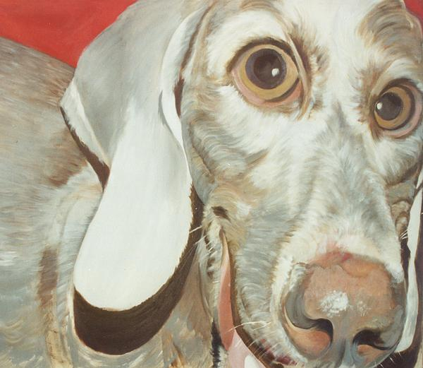 Dog Painting - Charlie by Linda Deater