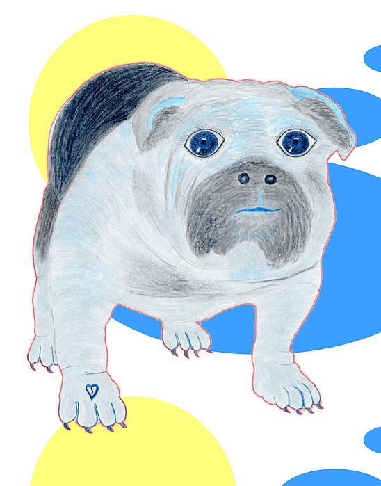 Dogs Painting - Charlie The Bulldog by Tess M J Iroldi