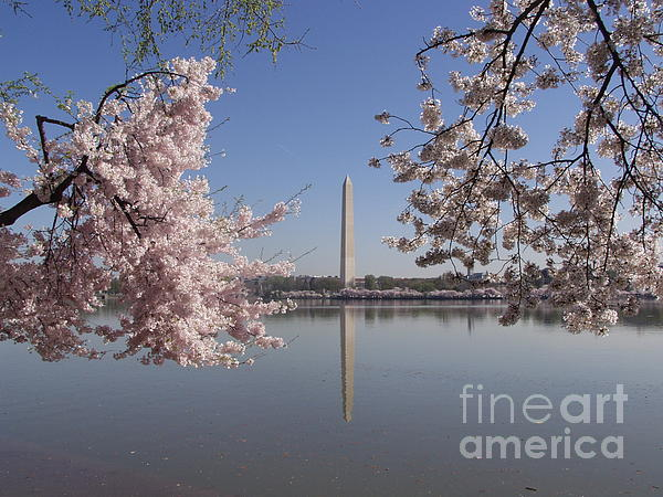 Japanese Photograph - Cherry Blossoms Monument by April Sims