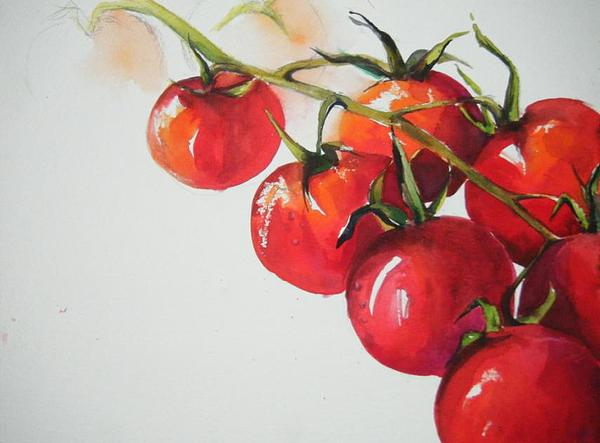 Tomatoes Painting - Cherry Tomatoes by Yasmin  Modi