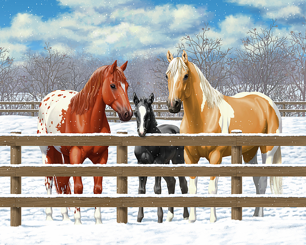 Horse In Snow Painting - Chestnut Appaloosa Palomino Pinto Black Foal Horses In Snow by Crista Forest
