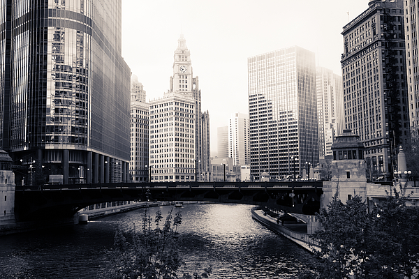 Bridge Photograph - Chicago River Skyline by Paul Velgos