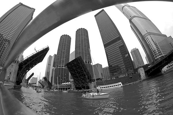 Chicago Photograph - Chicago Sailboats Heading To Harbor by Sven Brogren