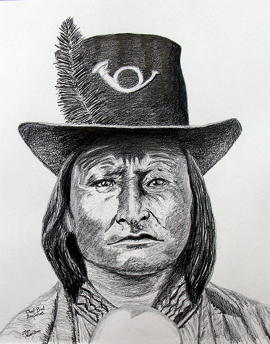 Indian Drawing - Chief Bird-arapahoe by Stan Hamilton