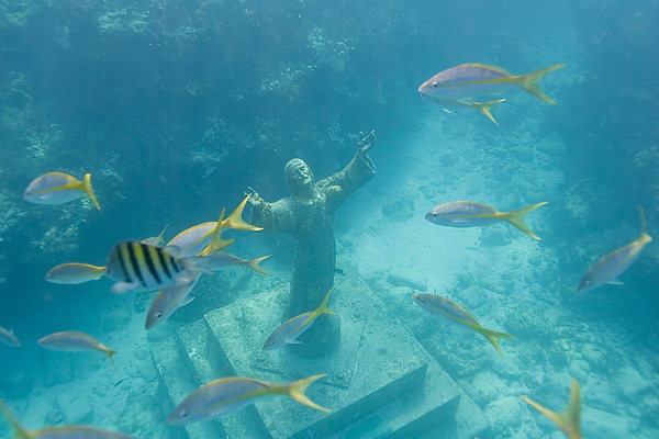 Day Photograph - Christ Of The Deep Statue In A Coral by Mike Theiss