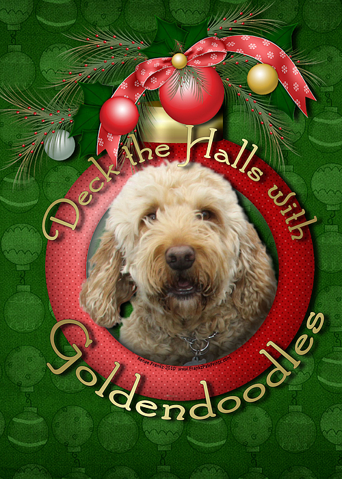 Goldendoodle Digital Art - Christmas - Deck The Halls With Goldendoodles by Renae Laughner