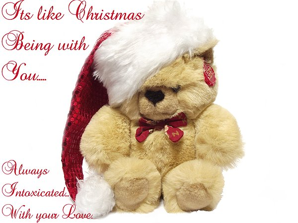 Bear Photograph - Christmas Bear Intoxicated With Your Love by Dawn Hay