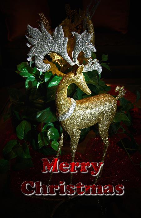 Christmas Card Photograph - Christmas Card by Chris Brannen