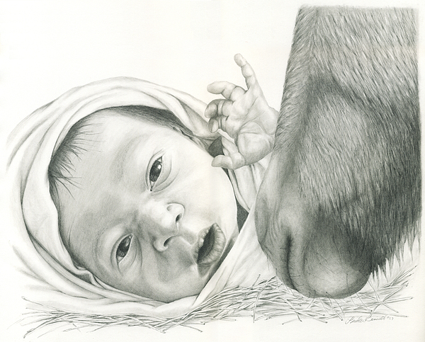 Baby Drawing - Christmas by Linda Bissett